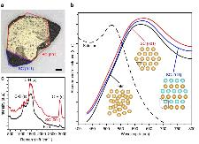 Large gold supercrystal of sub-millimeter size and optical characteristics