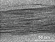 Cross-sectional transmission electron micrograph of a polymer-clay nanocomposite (PCN) thin film. Clay platelet layers are seen as dark striations.